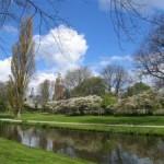 Het Wilhelminapark in 2006 (John Breedijk)