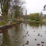 Waterwerk in het Wilhelminapark (Jan van Empel)