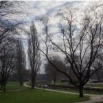 Het Wilhelminapark (Ernst van Erkelens)