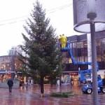 Optuigen kerstboom op het Promenadeplein (Jan van Empel)