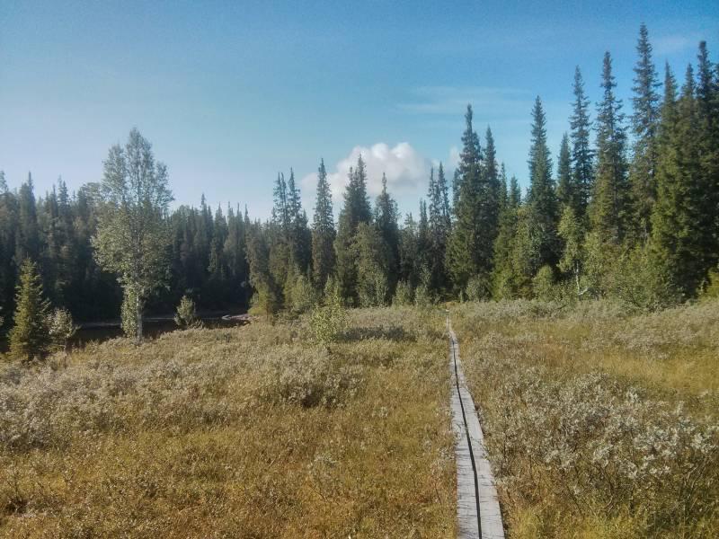 Daimadalens Naturreservat