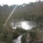 IJs op het water (1)