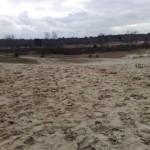 Nationaal Park de Loonse en Drunense Duinen (2)