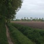 Vanaf het te volgen pad hadden wij dit uitzicht op Anloo.