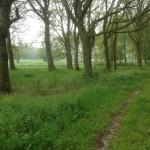 Dit is een heel mooi slingerend pad door de Drentsche natuur.