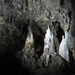 Domein van de Grotten van Han - Grotten