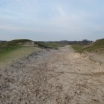 De overgang tussen de Zeepeduinen en de Boswachterij Westerschouwen is zeer fraai.