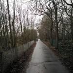Dit is gewoon een mooi straatje waar onze wandeling overheen liep.