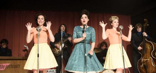 TV Serie : Petticoat