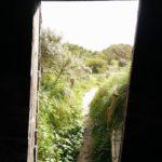 Dit is de toegang tot de vogelhut, gezien vanuit de vogelhut.