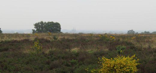 De Mookerheide met in de verte nog een paar fraaie torens
