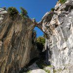 Zelfs in een kloof en op steen is de groene natuur niet tegen te houden.