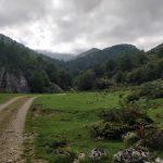 Een pad dat door een hele smalle, zeer groene, vallei liep.