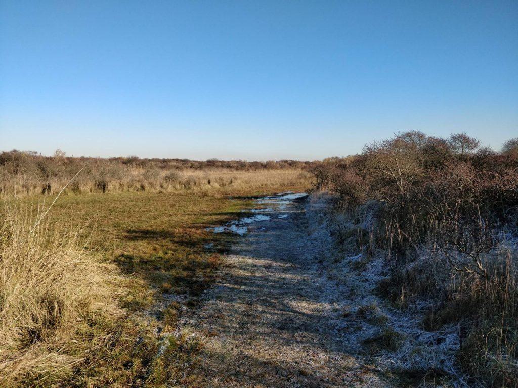 Op het einde van de wandeling liepen wij over dit fraaie pad