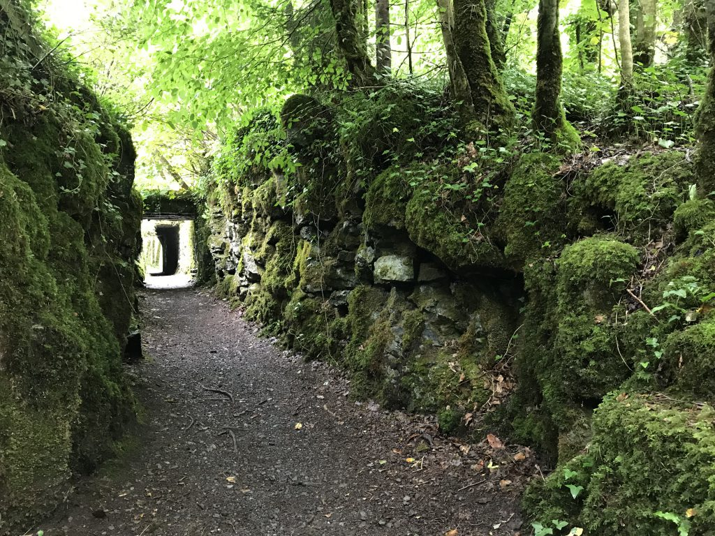 Leuk Tunneltje (1)