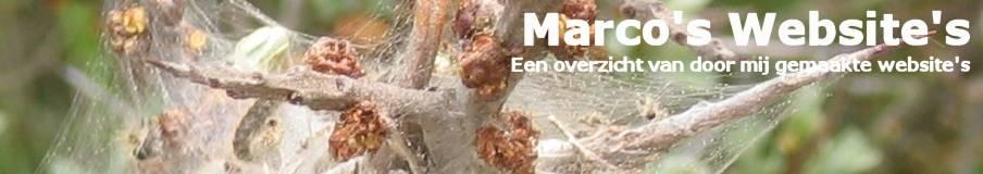 Marco's Website's