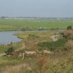 Buytenpark vanaf de heuvel gezien (Remko Bordewijk)