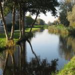 Zicht op de Delftsewallen (Wim van Herpen)