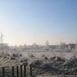 Wit grasveld (1)