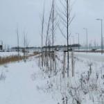 Sneeuw op Lofoten (2)