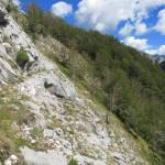 Marmerberg Monte Altissimo (1)