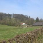 Weidse uitzichten (2)