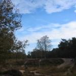 Duinen in De Stulp