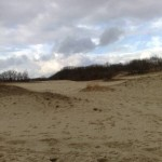 Nationaal Park de Loonse en Drunense Duinen (4)