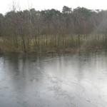 IJs op het water (2)