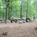 Midden in de bossen kwamen langs het Hunebed D11 Anloo.