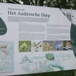 Tijdens de wandeling zijn wij door het Andersche Diep gelopen. Een mooi natuurgebied.
