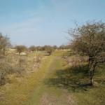 Dit was een heel fraai graspad met hele fraaie uitzichten aan alle kanten.