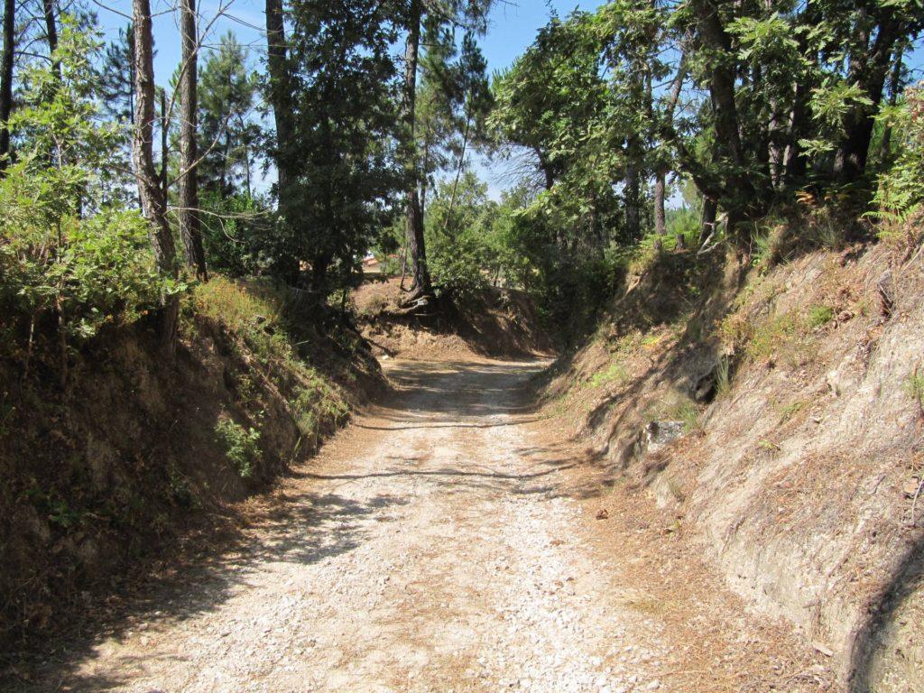 Een leuk weggetje waar je over heen komt tijdens het wandelen van de rode stippen wandeling vanaf Camping Toca Da Raposa.