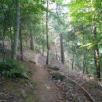 Op weg naar de waterval Poco do Inferno, kwamen wij over dit leuke bospaadje.