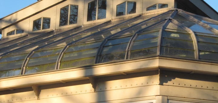 Ooievaars op een mooie gebouw in Artis.