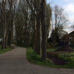 Dit is het gehucht Baarlo dat dicht bij Blokzijl ligt.