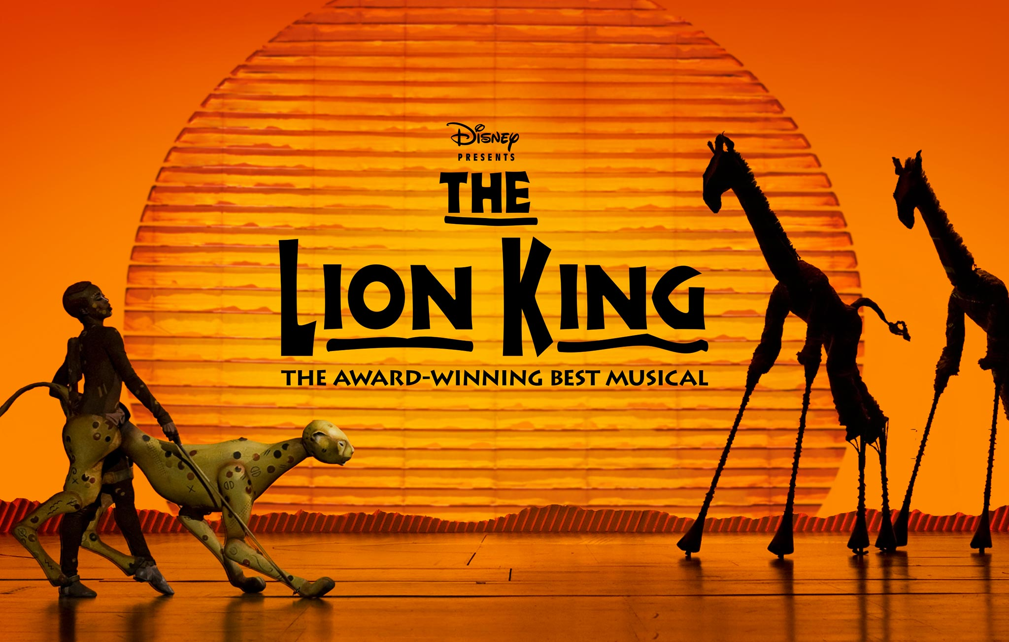 Musical : The Lion King – Marco's Domein