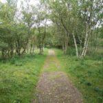Aan het begin van de wandeling liepen wij door dit mooie bos.
