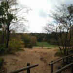 De wandeling kwam langs het Doornse Gat. Een heel fraai stukje recreatieterrein.