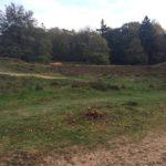 De wandeling kwam ook nog langs dit fraaie stukje Heide.