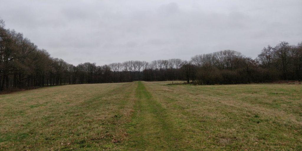Dit was echt een hele mooie grasdijk.