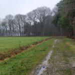 Dit zompige boerenweggetje leidde ons naar een volgend deel van de wandeling.