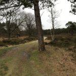 Dit mooie pad mochten wij ook bewandelen.