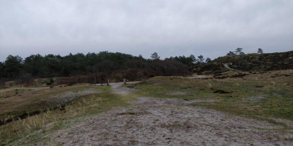 De Schoorlsche Duinen zijn gewoon een heel mooi gebied.