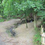 Het begin van een mooie wandeling door het bos en langs een beekje