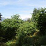 Ook tijdens deze wandeling hadden wij nog uitzicht over de bergen.