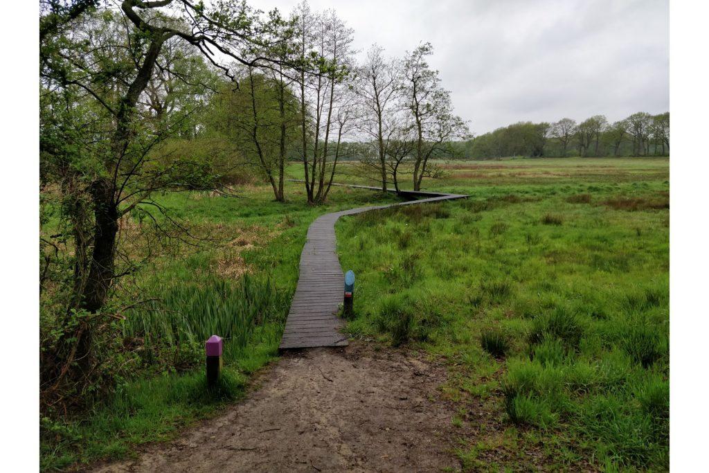 Dit leuke pad gemaakt van hout, volgenden wij een klein stukje.