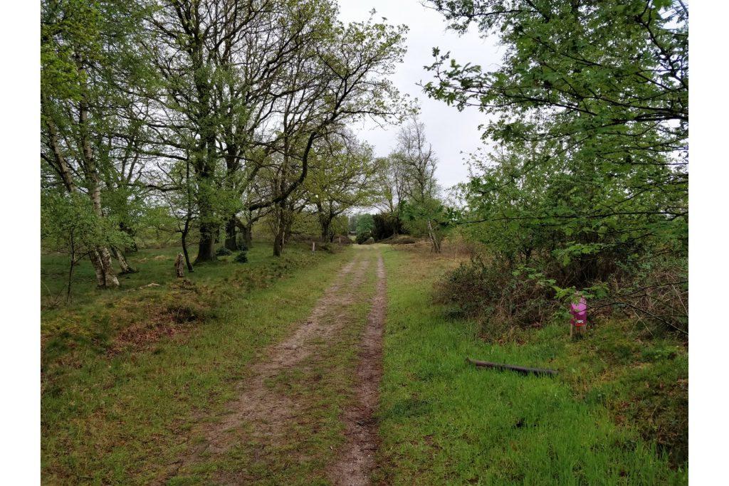 Over dit leuke pad liepen wij op bijna het einde van de wandeling.