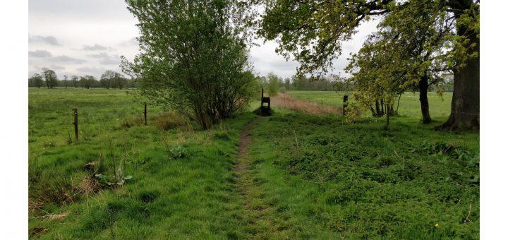 Dit leuke pad volgenden wij een tijdje door de velden heen en onderweg hadden wij een aantal van dit soort overstapjes.