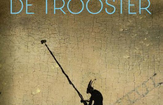 Boek : Esther Gerritsen - De Trooster